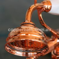 copper plated shower rose